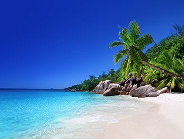 140696443 תמונת טפט חוף טרופי